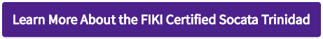 Learn More About the FIKI Certified Socata Trinidad - Button.png